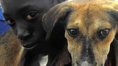 5 niños salvan a un cachorro abandonado y dan una gran lección a los mayores