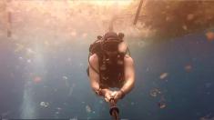 Dramático video muestra la vida marina nadando entre masas de plástico