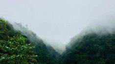 ¿Te sientes incómodo? La sabiduría china dice que se puede culpar a las 'lluvias de granos'