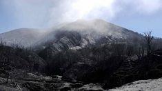 Volcán Turrialba mantiene emanaciones moderadas de ceniza en Costa Rica