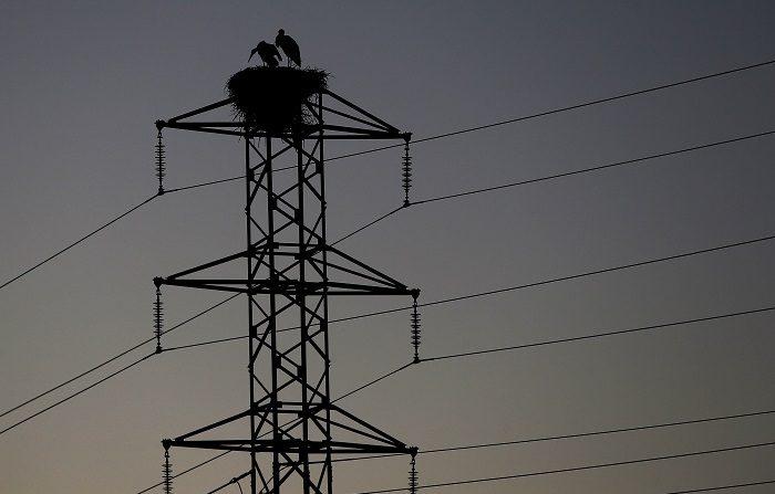 El precio de la electricidad en los hogares españoles bajó un 4,7 % en 2017. Dos cigüeñas permanecen en el nido de la torre de un tendido eléctrico cercano a la Catedral de Pamplona. EFE/Archivo