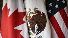 Renegociación del TLCAN entra en semana crítica con EEUU