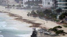 Florida declara estado de emergencia mientras se aproxima la tormenta Alberto