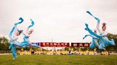 Día Mundial de Falun Dafa: Una celebración aún empañada por la persecución