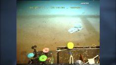 Submarino revela emblemática bolsa de plástico en la Fosa de las Marianas, la más profunda de la Tierra