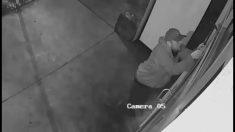 Ladrón es filmado por la policía cuando saca caja de caudales