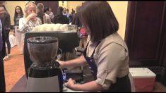 Entre 151 aromáticas muestras eligirán el mejor café de Honduras