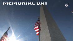 Las cifras de las celebraciones del Memorial Day