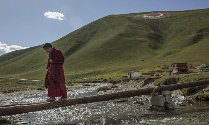 Un joven monje budista tibetano camina a través de una viga sobre un arroyo cerca de un monasterio junto a una comunidad de reasentamiento del gobierno para ex nómadas en la meseta tibetana en el distrito de Yushu, Qinghai, China, el 23 de julio de 2015. Millones de tibetanos fueron obligados por el régimen chino a abandonar su modo de vida tradicional y a reasentarse en zonas designadas por el gobierno. (Kevin Frayer/Getty Images)