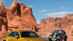 Volkswagen Beetle Dune, el más fornido de todos