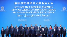 Interpol, encabezada por el viceministro de Policía de China, abusa de las notificaciones rojas para localizar a disidentes en el extranjero
