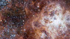 En Chile el telescopio del Observatorio Paranal logró captar las imágenes más nítidas y detalladas de la Nebulosa Tarántula