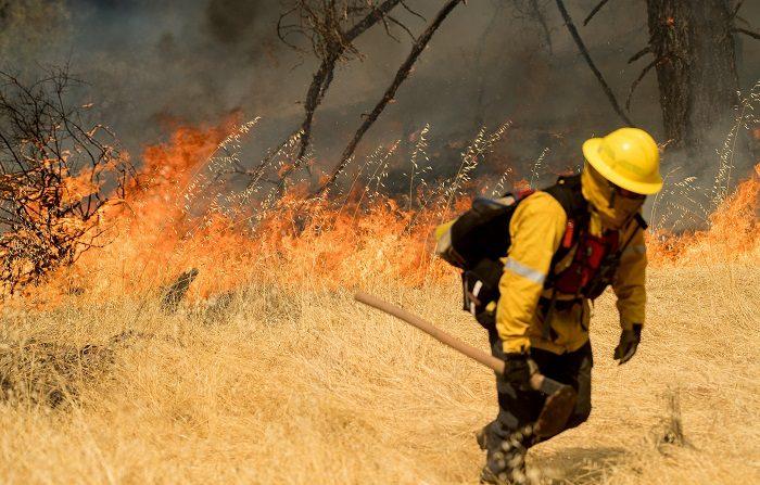Incendios forestales calcinan más de 1.500 hectáreas de bosques en Nicaragua. Imagen ilustrativa EFE/Archivo