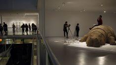 Un hipopótamo que denuncia la corrupción reposa en un museo mexicano