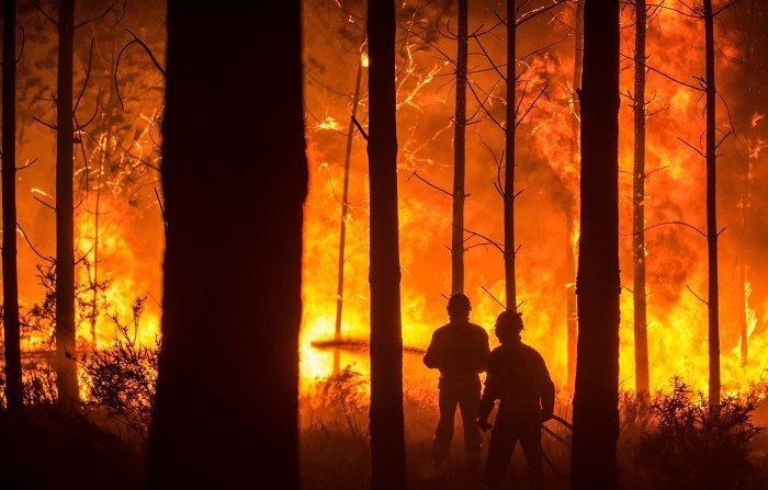 Un hombre lucha contra las llamas en un incendio forestal declarado en Vieira de Leiria en Marinha Grande (Portugal).EFE/Archivo