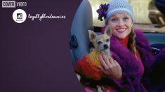 Reese Witherspoon podría regresar con 'Una rubia muy legal 3'
