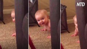 Estos ingeniosos padres se divierten jugando con sus adorables bebés y las risas no paran