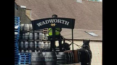 Cervecería distribuye su producto a la manera antigua: usando carruaje y caballos