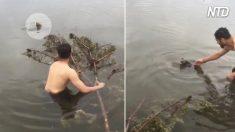 Ven a un animalito en grave peligro, agarran una rama cercana e inmediatamente acuden en su ayuda
