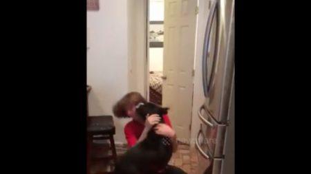 Este perro y su dueño no se habían visto por 3 meses y su abrazo de reencuentro lo dice todo