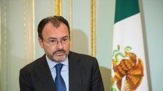 Canciller mexicano Videgaray viajará a Washington para asamblea OEA, se reunirá con pares