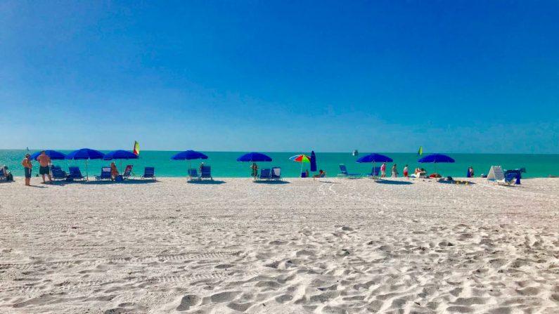 Gente y sombrillas se alinean a lo largo de la playa en el suroeste de Florida / AFP PHOTO / Daniel SLIM (El crédito de la foto debe leer DANIEL SLIM/AFP/Getty Images)