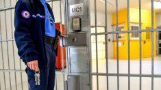 En EE.UU. condenan a un total de 31 años de cárcel a dos personas por apoyar al terroristas de ISIS