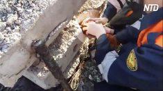 Está atrapada en una losa de concreto. Cuando los rescatistas oyen sus gritos, sacan los martillos