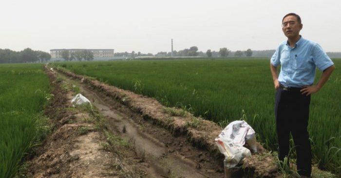 'Carta desde Masanjia': la conmovedora historia de Sun Yi, autor de cartas de SOS