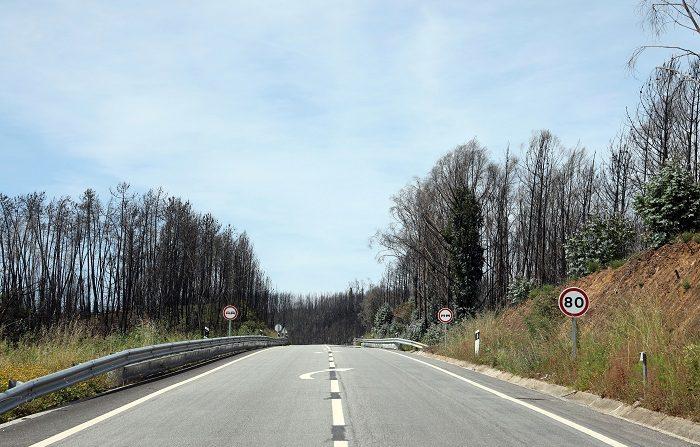 El Gobierno ha aprobado hoy el Plan de actuaciones para prevenir y luchar contra los incendios forestales, que cuenta con un total de 73 aeronaves. EFE/Archivo