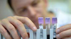 Descubren que prueba del papiloma detecta antes el cáncer de útero