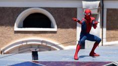 Muere en Nueva Yok Steve Ditko, uno de los creadores de Spider Man