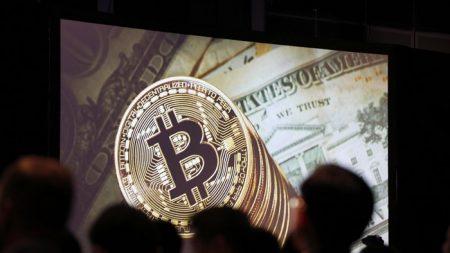 Fundador de dos negocios basados en el bitcóin se declara culpable de fraude