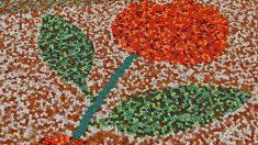 Indígenas mexicanos van por el Guinness con el mosaico más grande del mundo