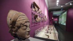 La Roma de los Reyes: El relato de la arqueología