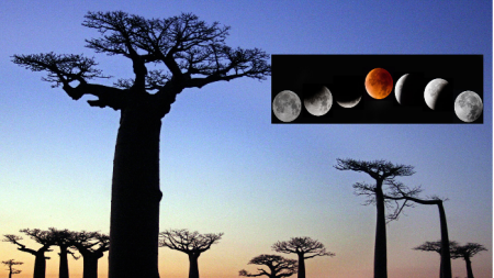 Se acerca el eclipse lunar más largo del siglo, así es como se verá