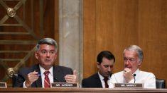 """""""Ya es hora de detener la coacción económica de China"""", afirman en el Senado estadounidense"""