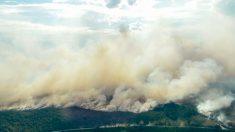 Incendios sin control por altas temperaturas en Suecia movilizan a Europa