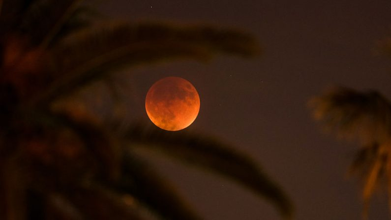 Un eclipse total de Luna se muestra el 27 de septiembre de 2015 en Los Ángeles, California. Un eclipse lunar total y una superluna no volverán a ocurrir juntos hasta 2033 en esta zona. (Christopher Polk / Getty Images)