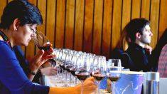 Partículas radioactivas en vinos de California: Estudios revelan su origen y los riesgos a la salud humana