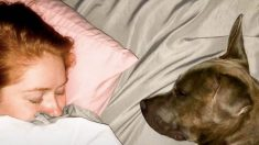 Esta mujer sufre de 15 enfermedades y adopta un perro con los mismos problemas