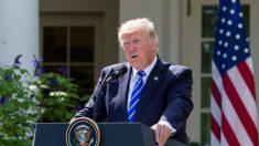 Juez federal descarta demanda que alega colusión entre Trump y Rusia