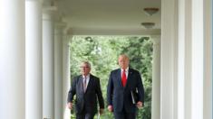 """EE.UU. y la UE abren """"nueva fase"""" eliminando aranceles sobre productos industriales no automotrices"""