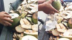 El refrescante jugo de un tierno coco calma la sed y nutre tu cuerpo
