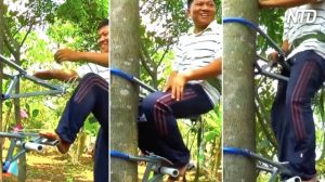 Mira este ingenioso aparato para subir a las palmeras de coco fácilmente