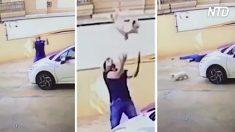 Mira hacia arriba, ve al perro a punto de caer desde un balcón y se prepara para una atrapada épica