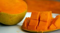 ¿Sabías que las hojas de mango pueden curar la diabetes? Descubre cómo