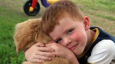 Niño con parálisis cerebral se llena de alegría al recibir un perro de servicio gracias a un extraño