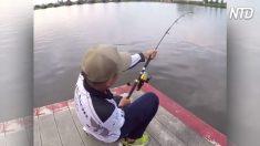 Tira de la caña de pescar con todas sus fuerzas y saca un bagre gigante de casi 2 m. ¡Fue memorable!
