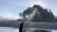 """Un """"bosque fantasma"""" avizora tsunamis en una playa de Oregón"""